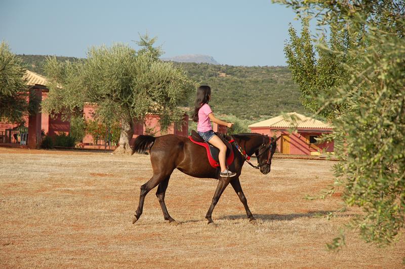 hippesippe__Eumelia__ horse__riding__Copyright__www.eumelia.com